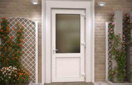 Грамотный выбор пластиковых дверей для входа