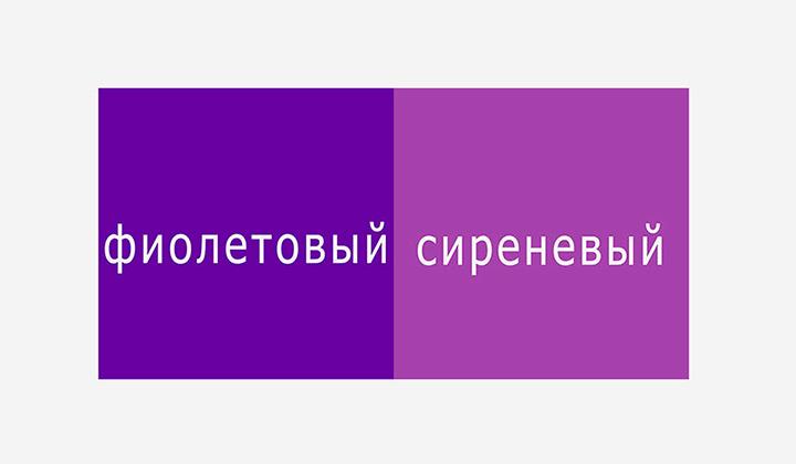 сравнение фиолетового и сиреневого