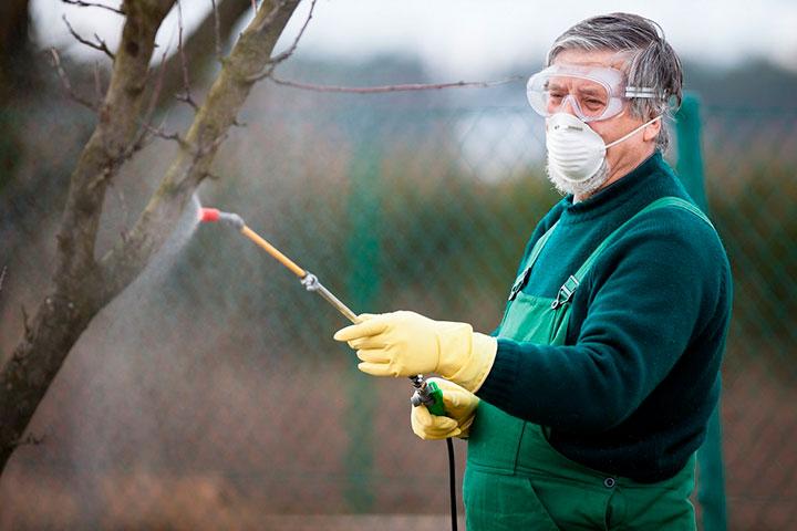 как уничтожить вредителей сада